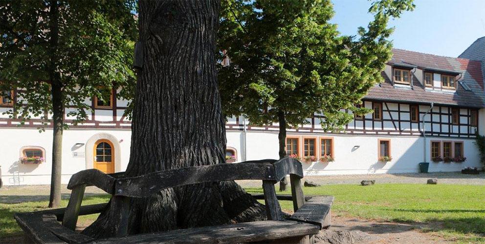 Alter Baum mit Bank im Innenhof der Heimvolkshochschule